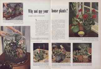 Better Homes & Gardens from 1949 | Why not use your house plants?