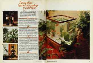 Better Homes & Gardens from 1976 | Spring-Fresh indoor mini-gardens to grow now